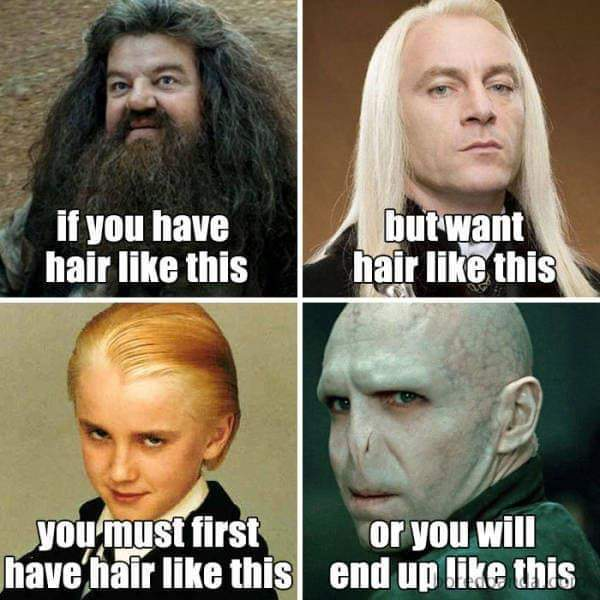 Harry Potter Hair Meme, If you have hair like Hagrid, but you want hair like Lucious Malfoy, you must first have yellow hair like Draco Malfoy, or you will be bald like Voldemort